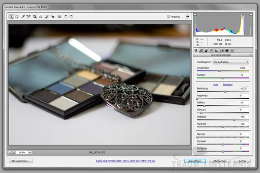 Camera RAW in Photoshop CS3